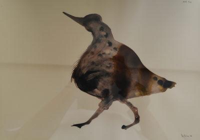 Denis Riva - Bird trip - olio su carta cm 25X35 - anno 2012