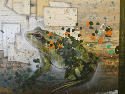 Denis Riva - Rana comune - tecnica mista su tela cm 60X79,5